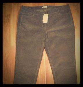 J. Jill Corduroy pants NWT Size 12 Petite